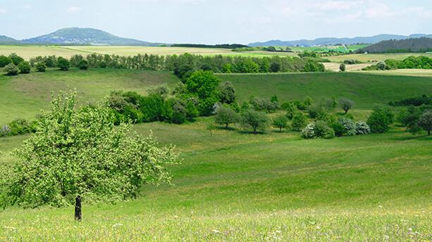 Eine Eifel-Wanderung in die Römerzeit