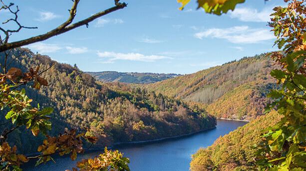 Eifel nationalpark