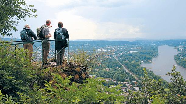 Die erste Etappe des Rheinsteigs
