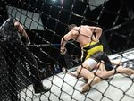 German MMA Championship 30/2020