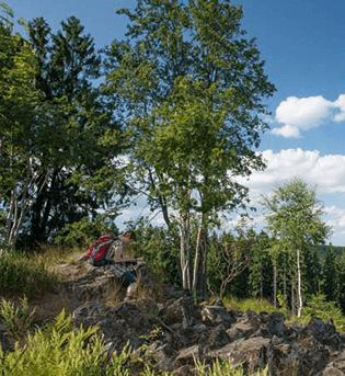 Auf dem Premiumweg Trödelsteinpfad